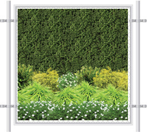 Green Hedge Wall Fence Screen 2049