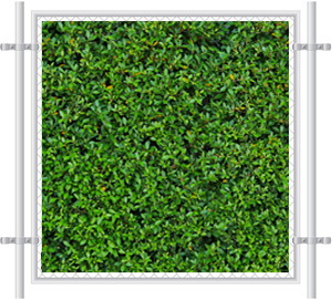 Green Grass Printed Mesh Fence Screen-2059