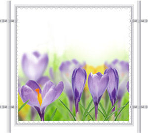Purple Flowers Mesh Fence Screen 2064