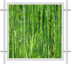 Green Bamboo Fence Screen