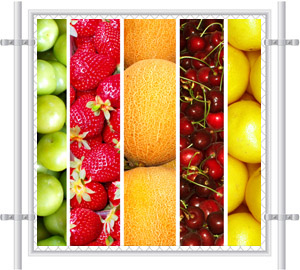 Mixed Fruits Printed Fence Screen 5001